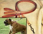 Quick release dog leashes for all breeds and sizes of dogs!