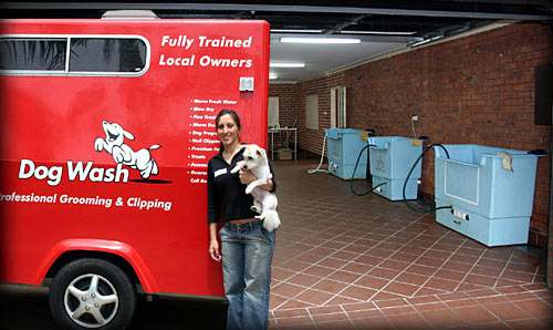 National and International experience in Dog Grooming and Animal Care!